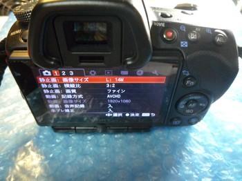 3P1040752.jpg